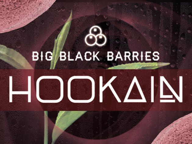 HOOKAIN - Big Black Barries (Traube, Beere, Minze, Ice) - 200g